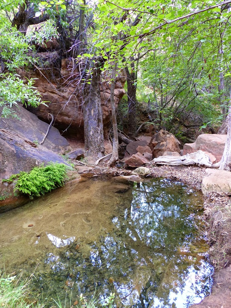 Emerald Pools/Kayente Trail Hike