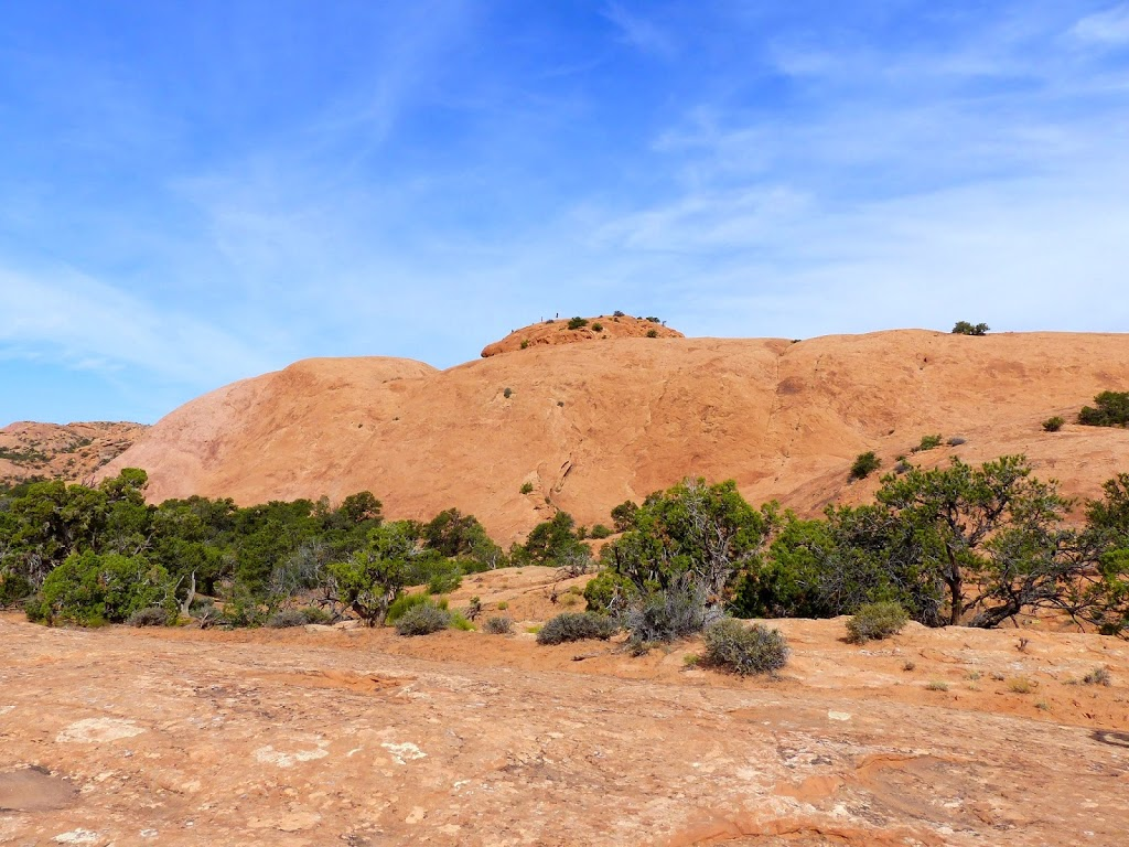 Whale Rock in Canyonlands